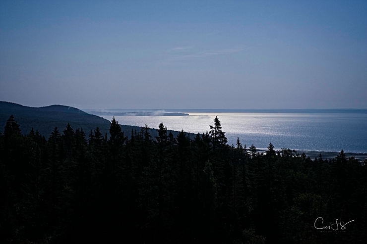 Fog over the Bay of Fundy