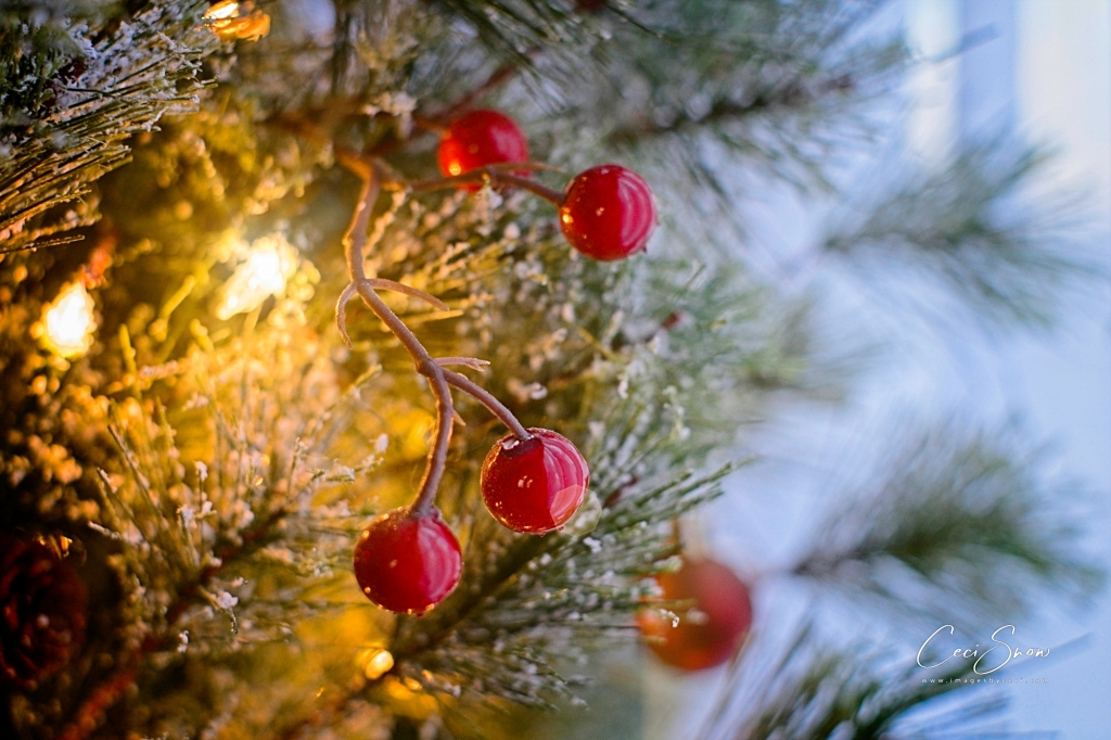 red berries on a lit Christmas tree