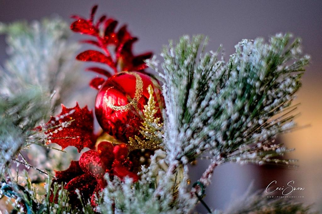 red Christmas ball on a tree