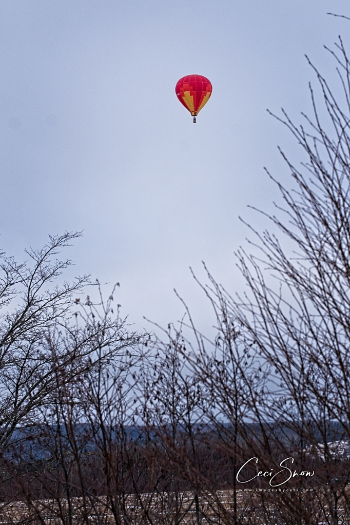 hot air balloon, winter scene
