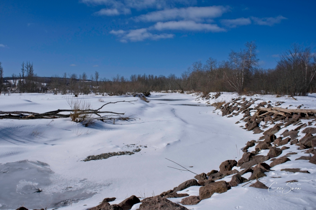 The bend in Trout Creek